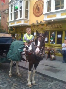 Horse and Cart Dublin